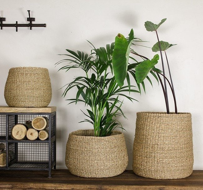 Seagrass Baskets - Tapered