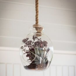 Hanging Glass Terrarium - SAVE 30%