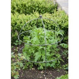 Raw Metal Domed Plant Support - Large