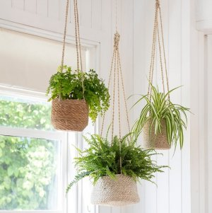 Hanging Seagrass Plant Pots - save 15%