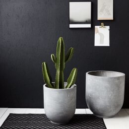 Concrete Planters - Set of 2