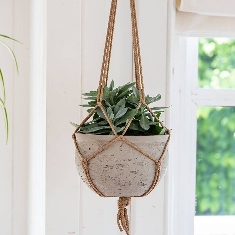 Hanging Cement Plant Pot - save 15%