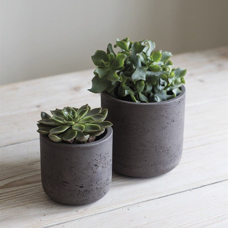 Cocoa Cement Plant Pots - Set of 2 save 30%