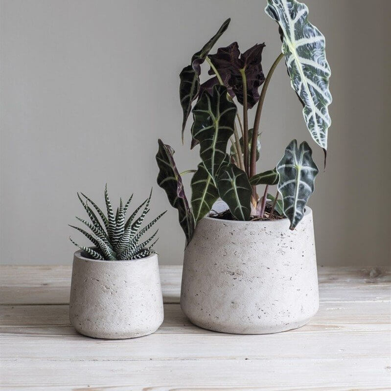 Tapered Cement Plant Pot - SAVE 25%