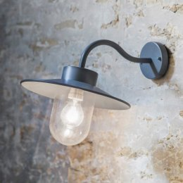 St Ives Swan Neck Light - Carbon